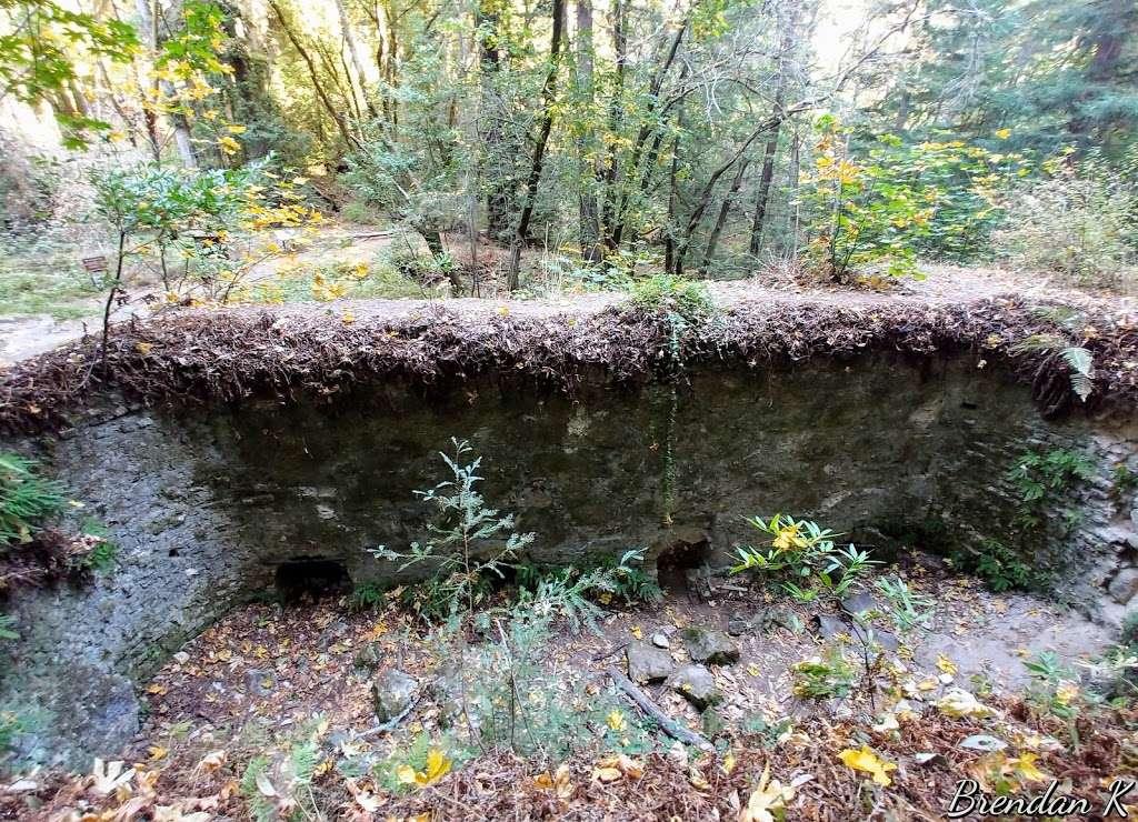 Old Lime Kiln Ruins - park  | Photo 8 of 10 | Address: Fall Creek Trail, Felton, CA 95018, USA