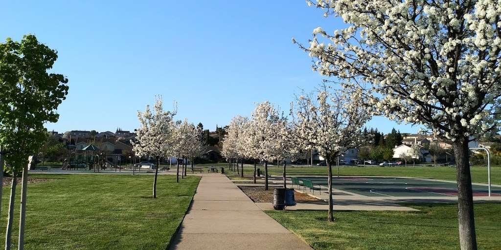 Dallas Ranch Park - park  | Photo 4 of 9 | Address: Prewett Ranch Dr, Antioch, CA 94531, USA | Phone: (925) 779-6950