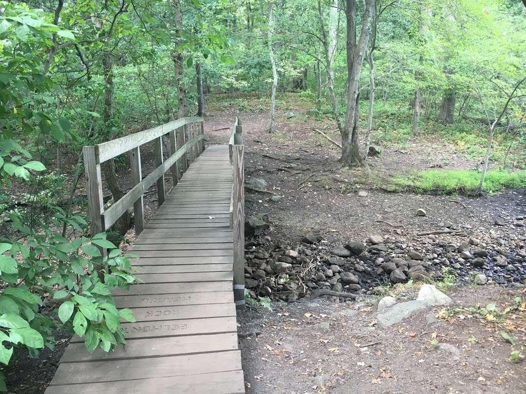 Rock Meadow Conservation Area - park  | Photo 3 of 10 | Address: Belmont, MA 02478, USA