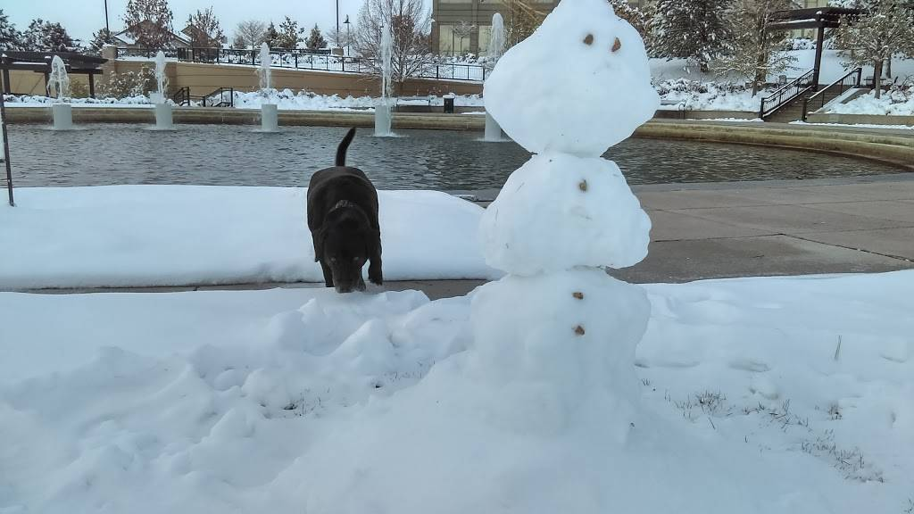 Wallace Park - park    Photo 8 of 10   Address: Denver, CO 80237, USA   Phone: (720) 913-1311