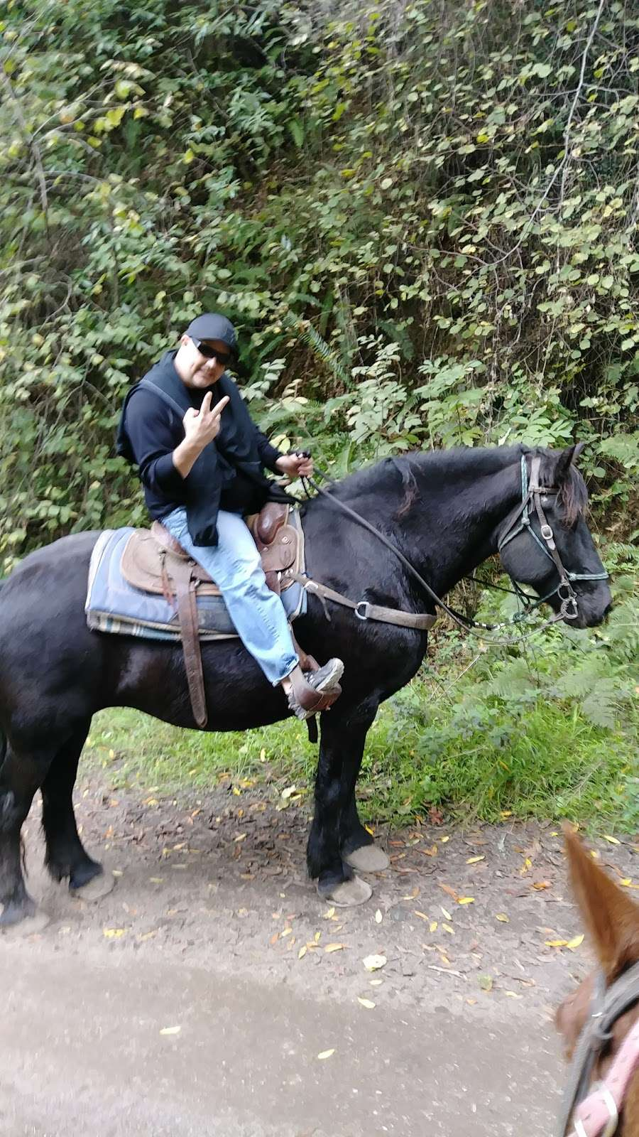 Five Brooks Ranch - travel agency  | Photo 10 of 10 | Address: 8001 CA-1, Olema, CA 94950, USA | Phone: (415) 663-1570