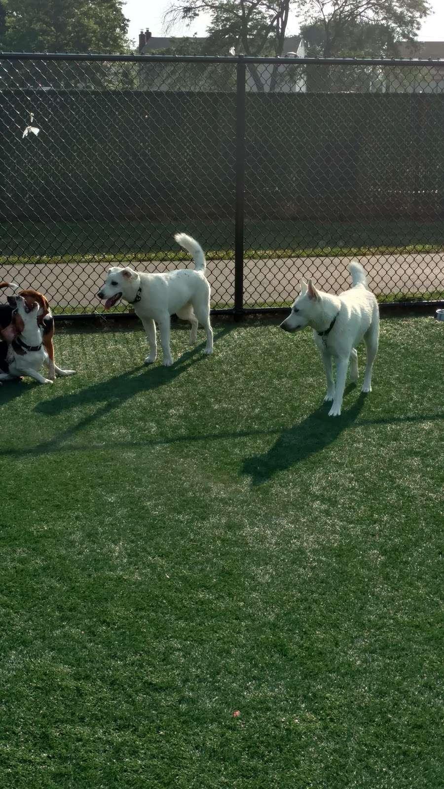 Wantagh Park Dog Run | 1 King Rd, Wantagh, NY 11793, USA