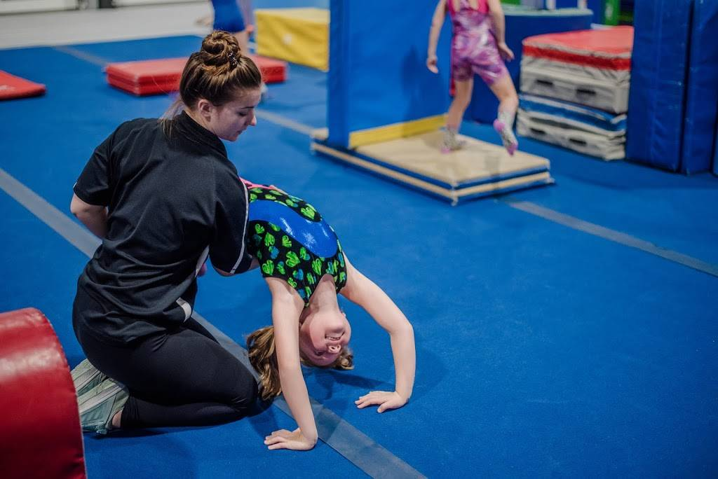 Greater Buffalo Gymnastics & Fitness Center - gym    Photo 6 of 9   Address: 1641 N French Rd, Getzville, NY 14068, USA   Phone: (716) 639-0020