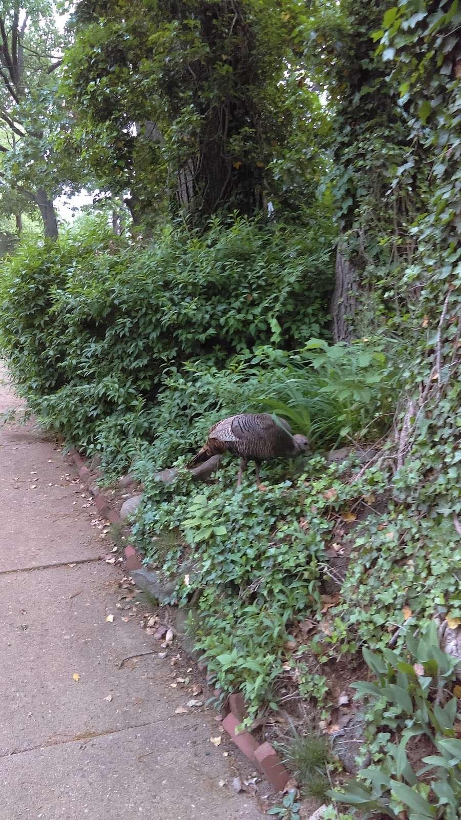 Windsor Park - park  | Photo 2 of 2 | Address: Teaneck, NJ 07666, USA | Phone: (201) 837-7130