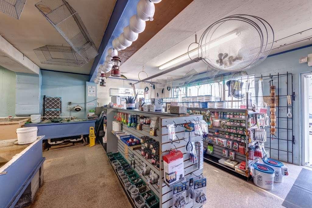 Docs Bait House - store    Photo 8 of 20   Address: 588 W Merritt Island Causeway, Merritt Island, FL 32952, USA   Phone: (321) 452-2288