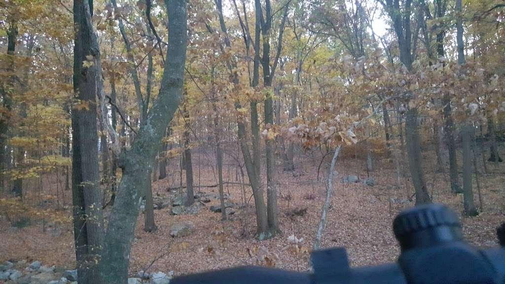 Morris County - park  | Photo 7 of 10 | Address: 3-85 Old Waterloo Rd, Budd Lake, NJ 07828, USA
