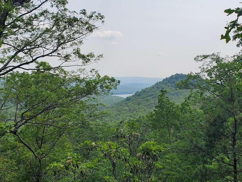 Rocky Knob Trail Head - park  | Photo 7 of 10 | Address: Ridge Rd, Shippensburg, PA 17257, USA | Phone: (717) 352-2211