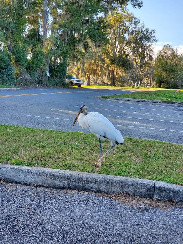 Lake Lillian - park    Photo 5 of 8   Address: SE Robinson Rd, Belleview, FL 34420, USA   Phone: (352) 245-7021