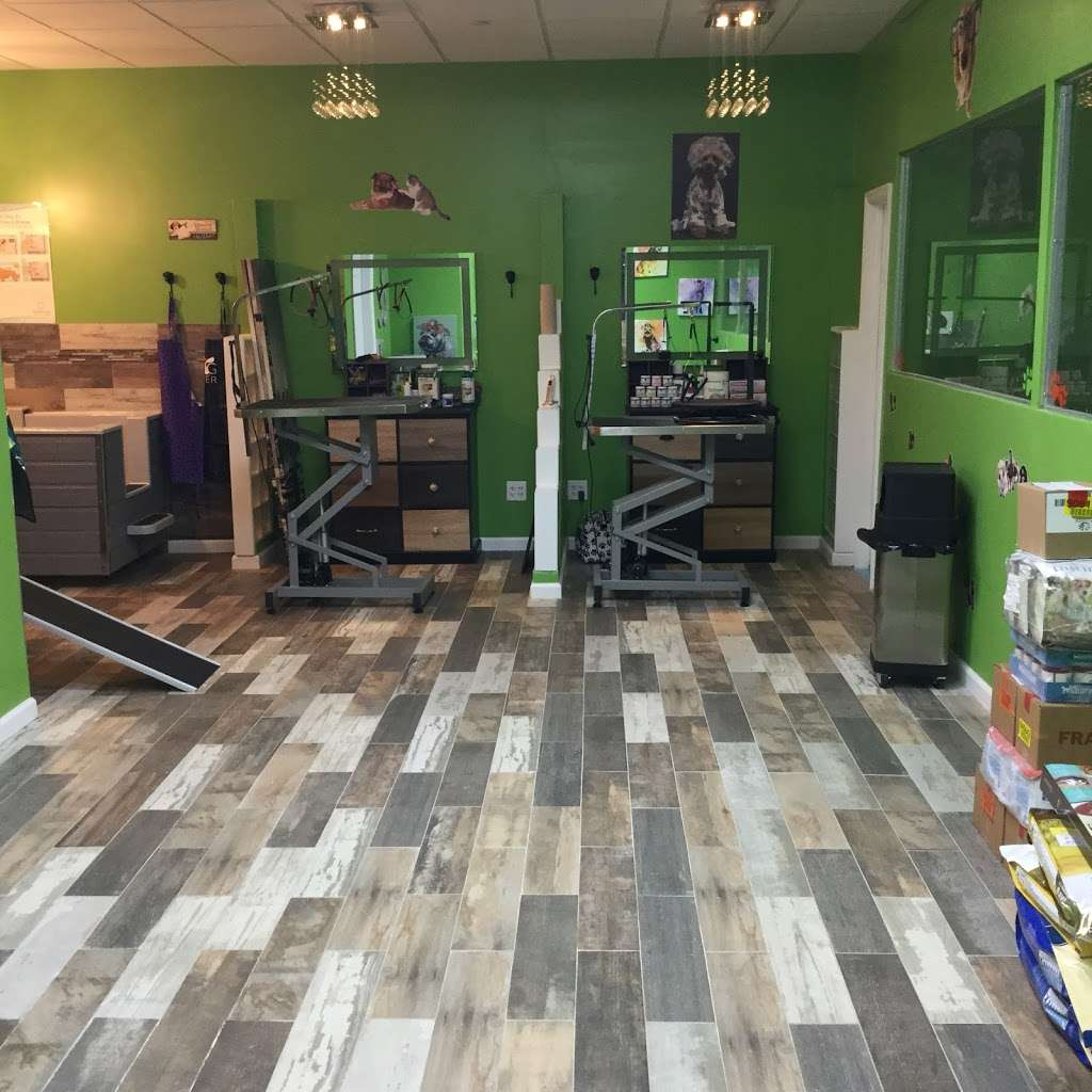 Bark And Purr Yonkers - clothing store    Photo 9 of 10   Address: 1 Pierpointe St, Yonkers, NY 10701, USA   Phone: (914) 476-2275
