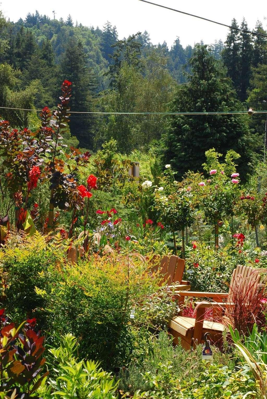 Plant Works - florist  | Photo 4 of 10 | Address: 7945 Hwy 9, Ben Lomond, CA 95005, USA | Phone: (831) 336-2212