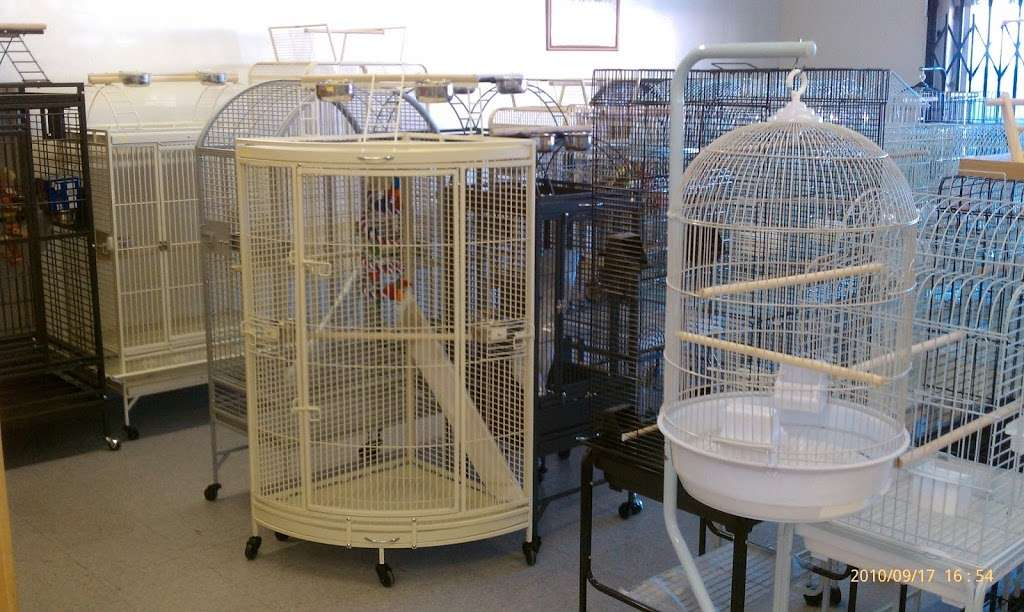 Fords Feathers - pet store  | Photo 7 of 10 | Address: 1532 W Carson St, Torrance, CA 90501, USA | Phone: (310) 212-5903