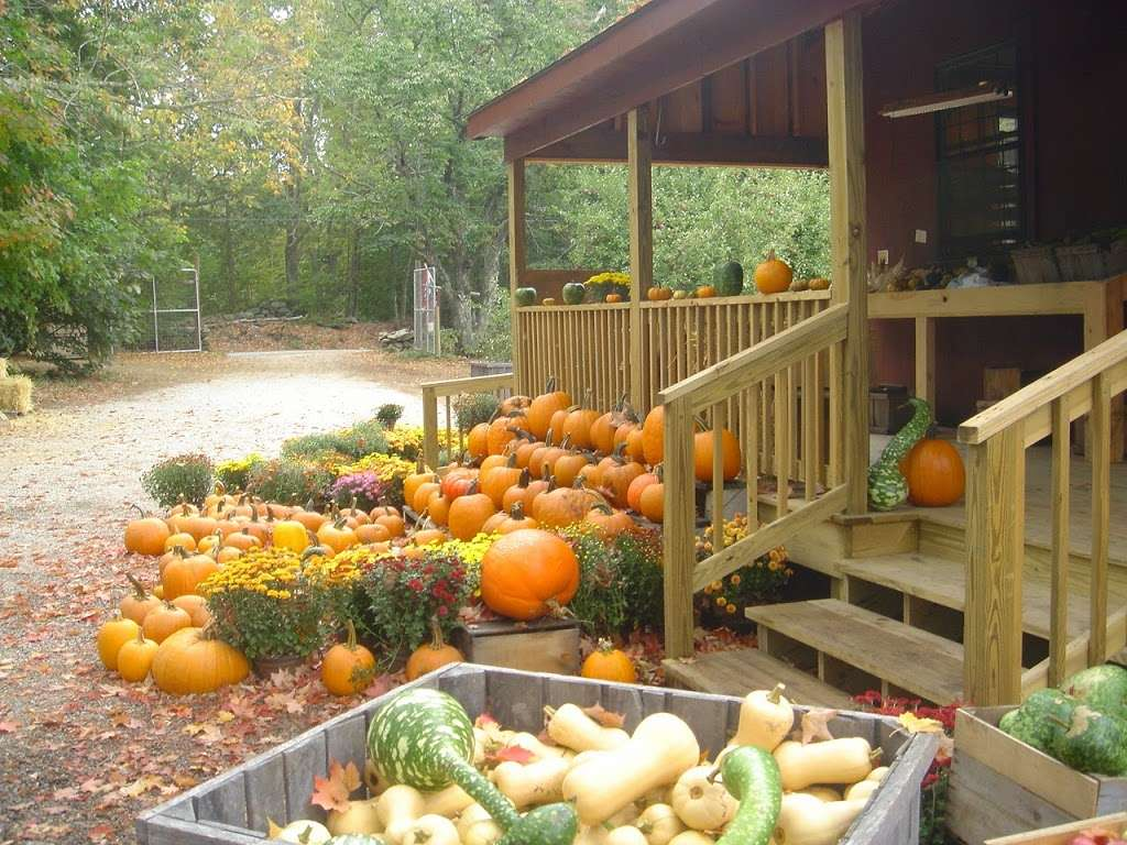 Barden Family Orchard - store  | Photo 4 of 10 | Address: 56 Elmdale Rd, North Scituate, RI 02857, USA | Phone: (401) 934-1413