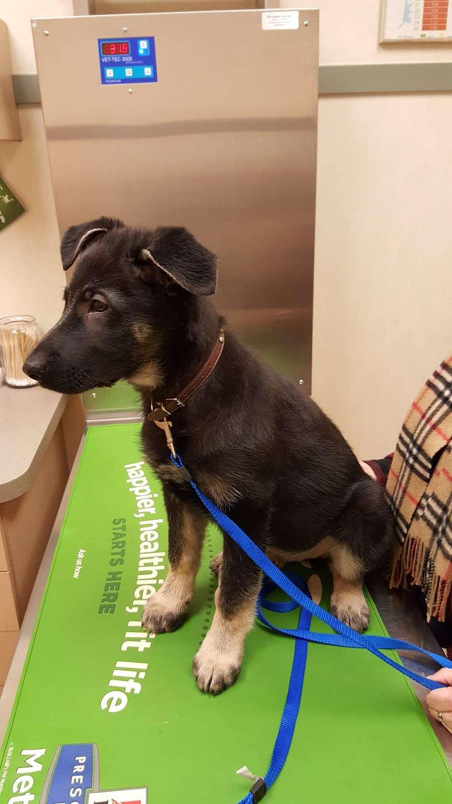 VCA Orange County Veterinary Hospital - veterinary care  | Photo 10 of 10 | Address: 1761 NY-17M, Goshen, NY 10924, USA | Phone: (845) 294-5044