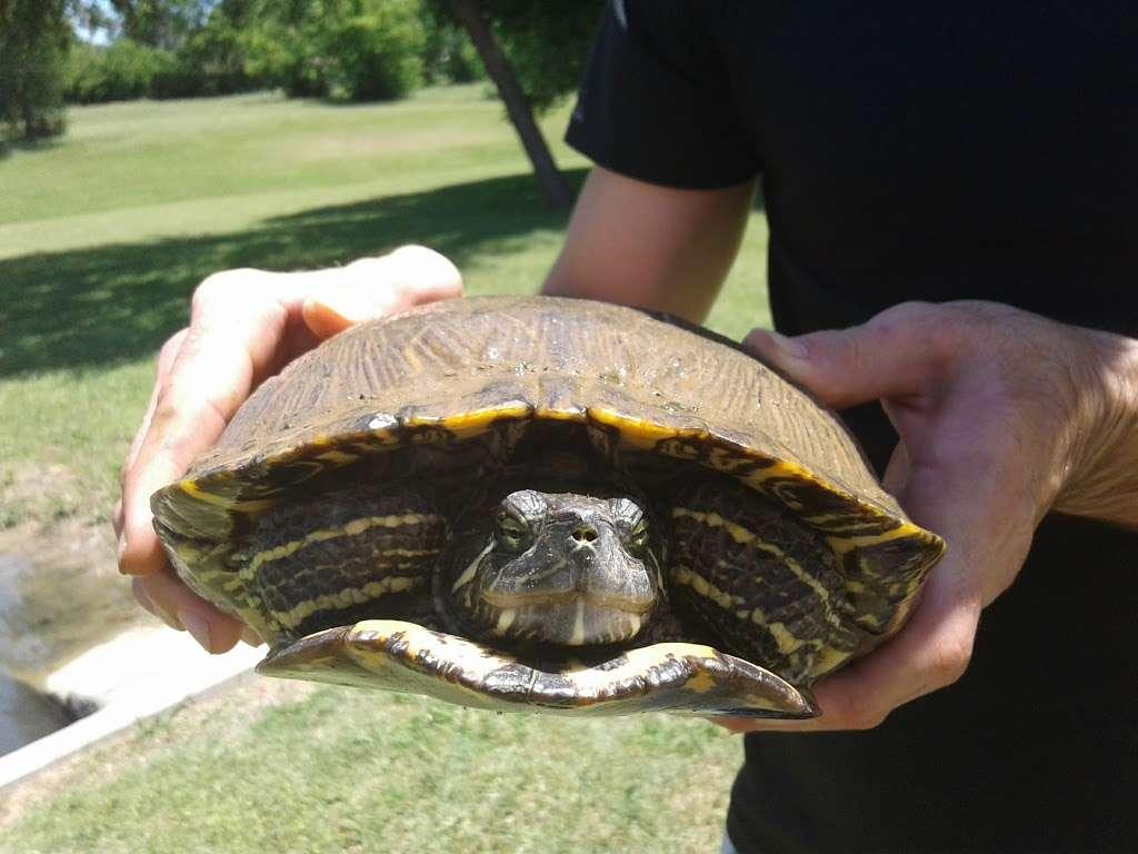Fox Creek Greenbelt Park - park  | Photo 1 of 9 | Address: Lewisville, TX 75067, USA