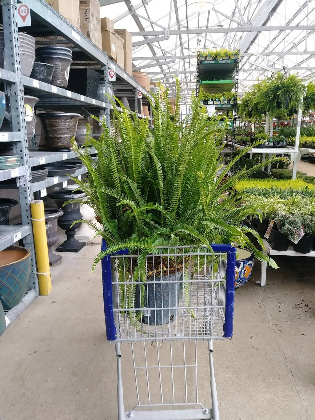 Lowes Home Improvement - hardware store    Photo 8 of 8   Address: 21000 West Rd, Woodhaven, MI 48183, USA   Phone: (734) 365-0034