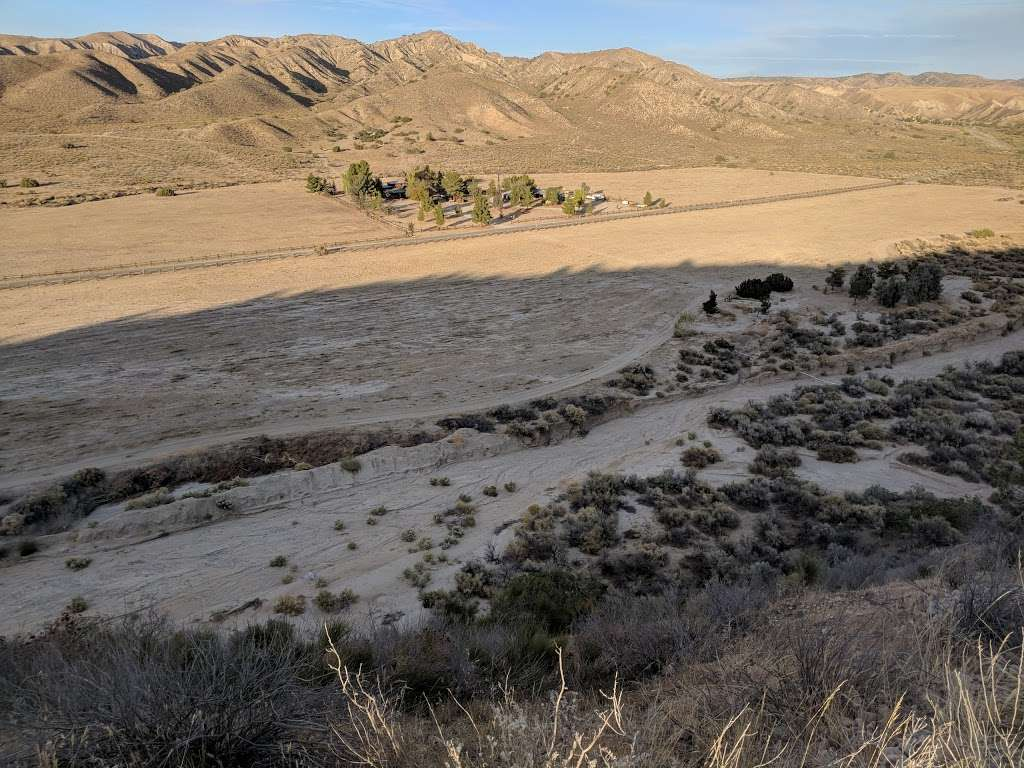 Songdog Ranch - campground    Photo 5 of 9   Address: 680 Ballinger Canyon Rd, Maricopa, CA 93252, USA   Phone: (661) 766-2454
