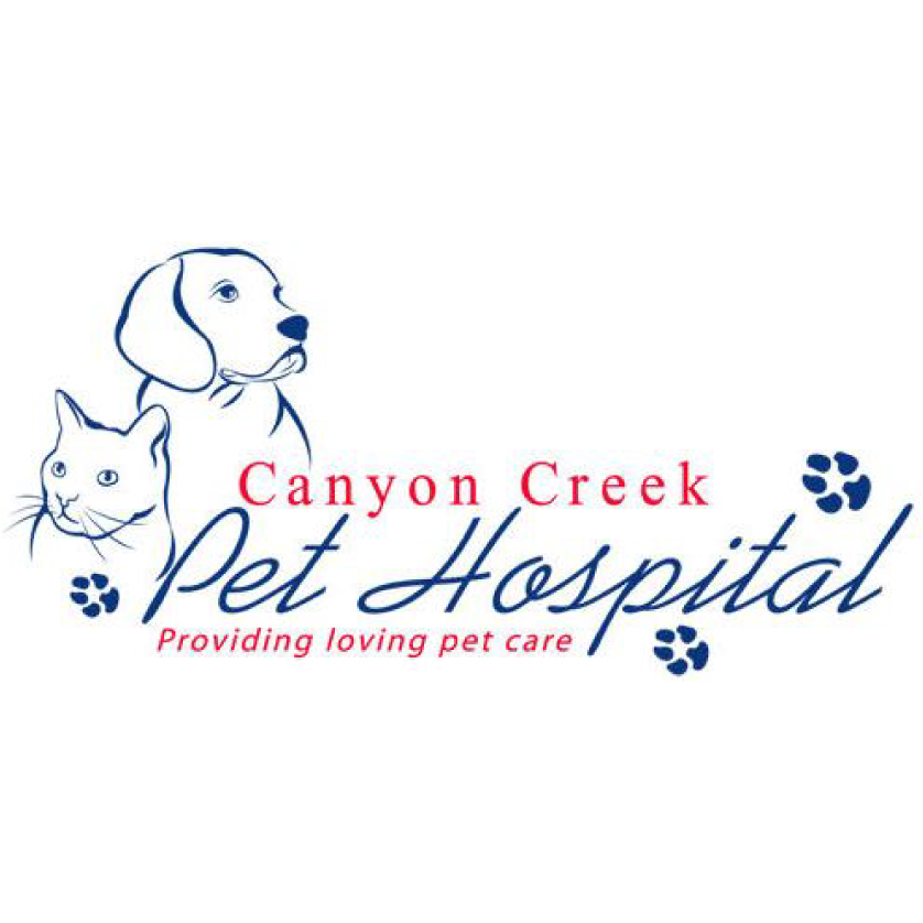 Canyon Creek Pet Hospital - pharmacy  | Photo 6 of 6 | Address: 5617 Silver Creek Valley Rd, San Jose, CA 95138, USA | Phone: (408) 809-0887