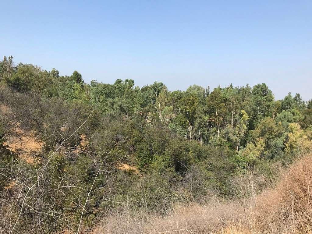 Galster Wilderness Park - park    Photo 7 of 10   Address: 1620 E Aroma Dr, West Covina, CA 91791, USA   Phone: (626) 919-0715