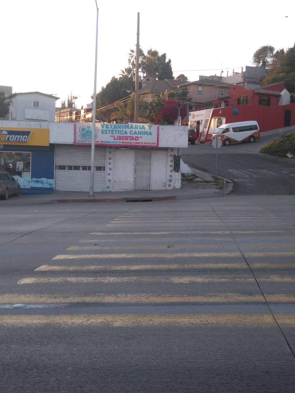 VETERINARIA Y ESTETICA CANINA LIBERTAD - veterinary care    Photo 1 of 2   Address: Blvd. Cuauhtémoc Nte. #440, Buena Vista, Libertad, 22400 Tijuana, B.C., Mexico   Phone: 664 682 4039