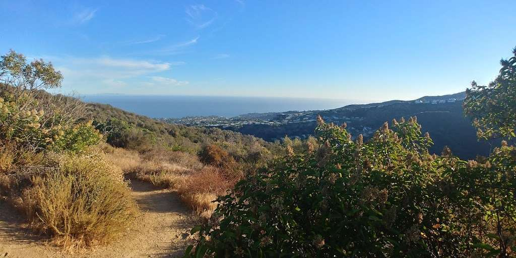 Viewpoint at Temescal Ridge Trail - park  | Photo 10 of 10 | Address: Temescal Ridge Trail, Pacific Palisades, CA 90272, USA