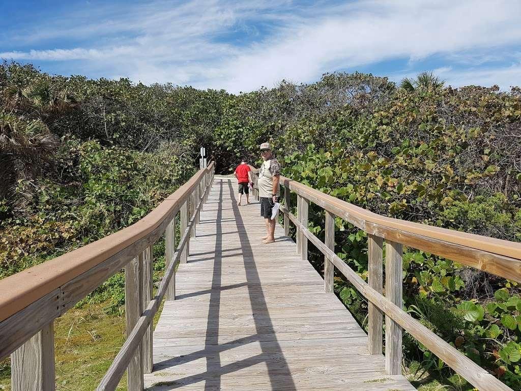 Ocean Ridge Hammock Park | Park | 6620 N Ocean Blvd, Boynton Beach, FL.  Photo By Becky Eller (Show Full Size). Ocean Ridge Hammock Park ...