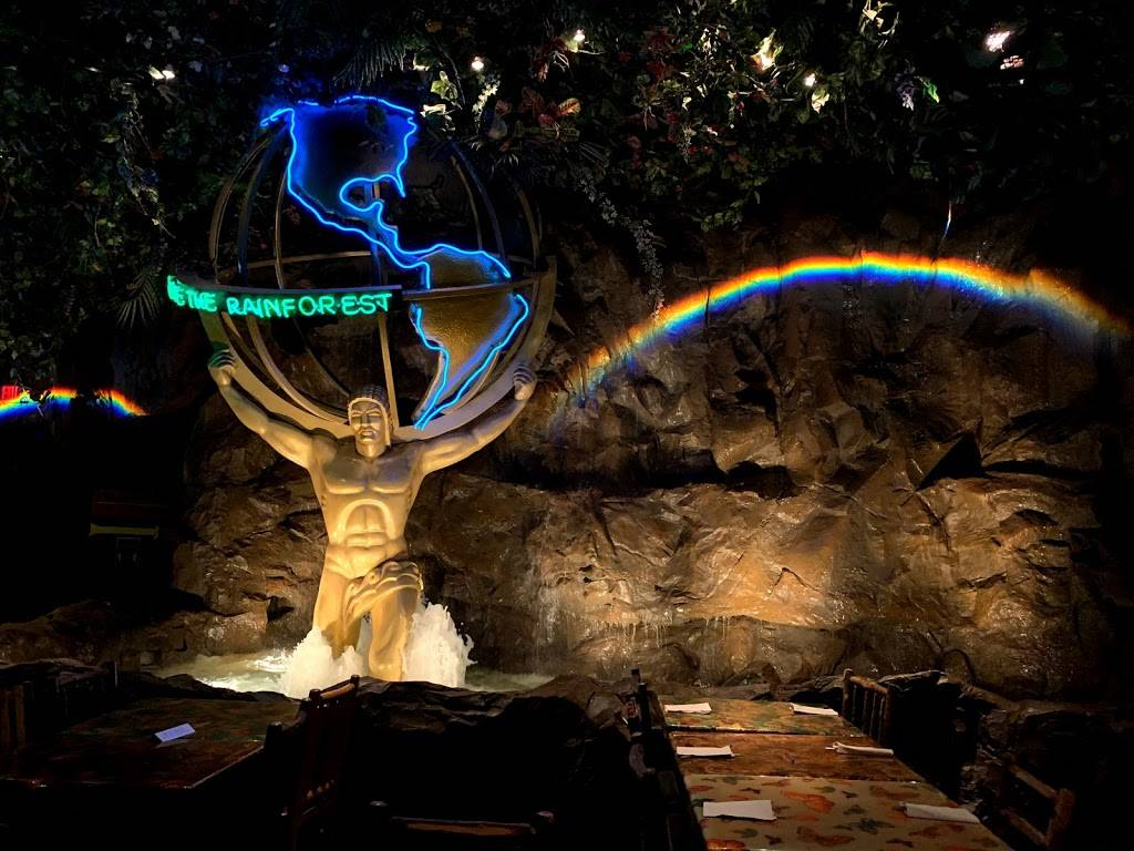 Rainforest Cafe - restaurant  | Photo 6 of 9 | Address: 1800 E Buena Vista Dr, Lake Buena Vista, FL 32830, USA | Phone: (407) 827-8500