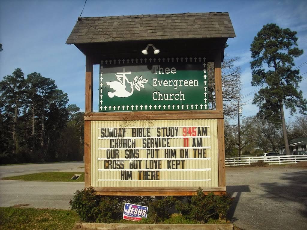 Thee Evergreen Church - church  | Photo 2 of 3 | Address: Coldspring, TX 77331, USA | Phone: (936) 767-8121