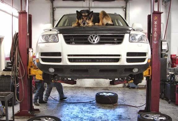 Hybrid Shop of the Triad - car repair  | Photo 2 of 10 | Address: 5350 University Pkwy unit s-2, Winston-Salem, NC 27106, USA | Phone: (336) 837-2886