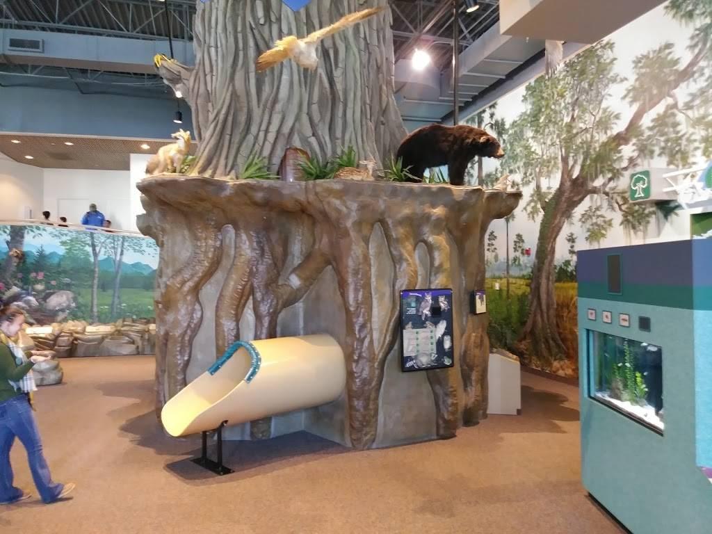 Kaleideum North - museum  | Photo 2 of 10 | Address: 400 W Hanes Mill Rd, Winston-Salem, NC 27105, USA | Phone: (336) 767-6730