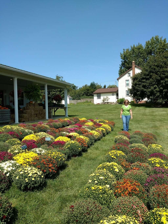Hess Orchards - store  | Photo 7 of 10 | Address: 3793, 3979 Wayne Rd, Chambersburg, PA 17202, USA | Phone: (717) 264-8872