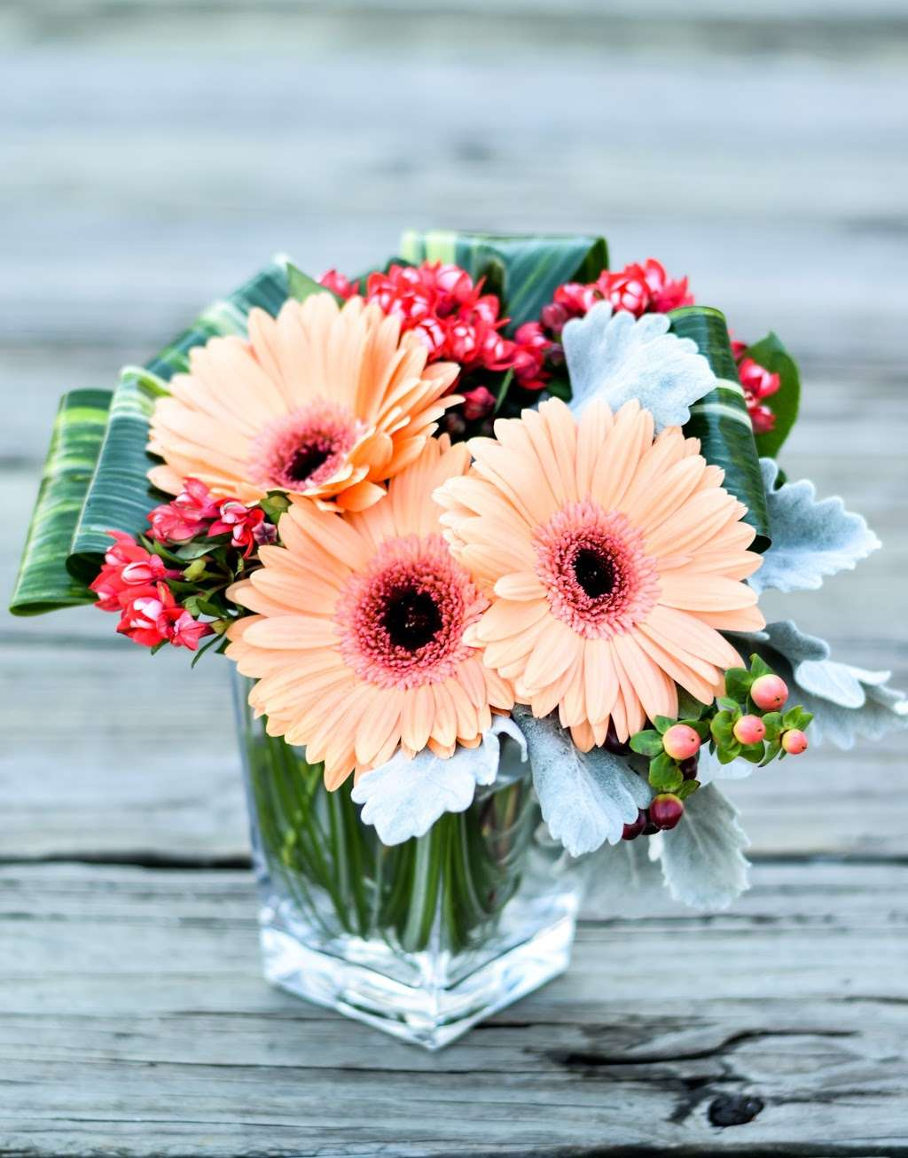 Noahs Ark Florist - florist  | Photo 10 of 10 | Address: 200 Hudson Street Harborside Financial Center, Jersey City, NJ 07311, USA | Phone: (201) 521-1031