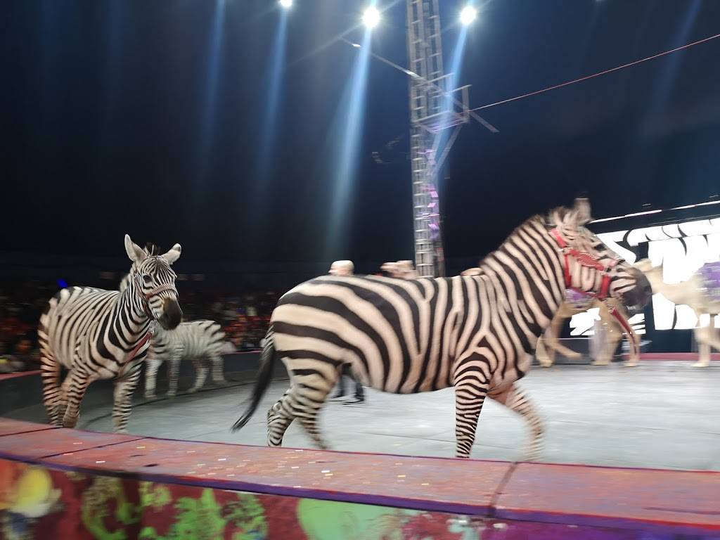 Universoul Circus In Washington Park - museum  | Photo 10 of 10 | Address: 52nd and, S, Payne Dr, Chicago, IL 60615, USA | Phone: (800) 745-3000