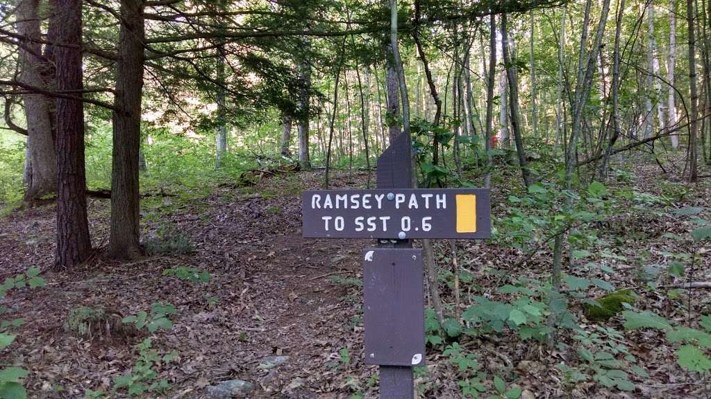 State Game Lands Number 81 - park  | Photo 5 of 10 | Address: Orbisonia, PA 17243, USA