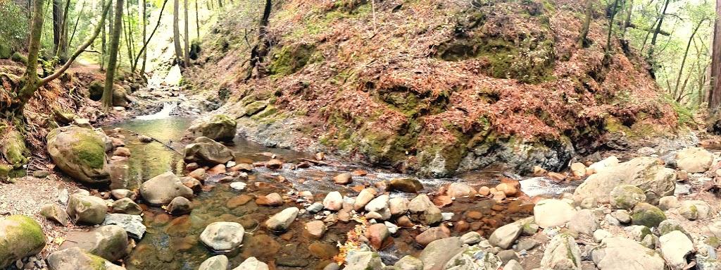 Sam Trail - park  | Photo 3 of 10 | Address: 15808 Sanborn Rd, Saratoga, CA 95070, USA