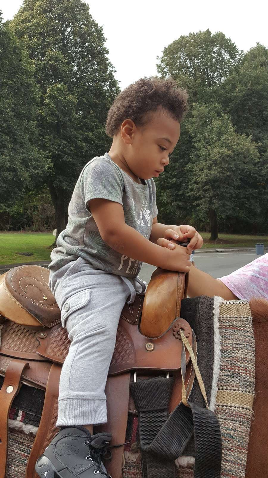 Breed Park - park  | Photo 8 of 10 | Address: Lynn, MA 01905, USA