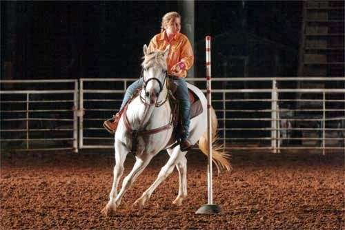 Becky Hellums Western Riding School - travel agency  | Photo 1 of 10 | Address: 2609 Holmes Rd, Richmond, TX 77469, USA | Phone: (281) 342-5355