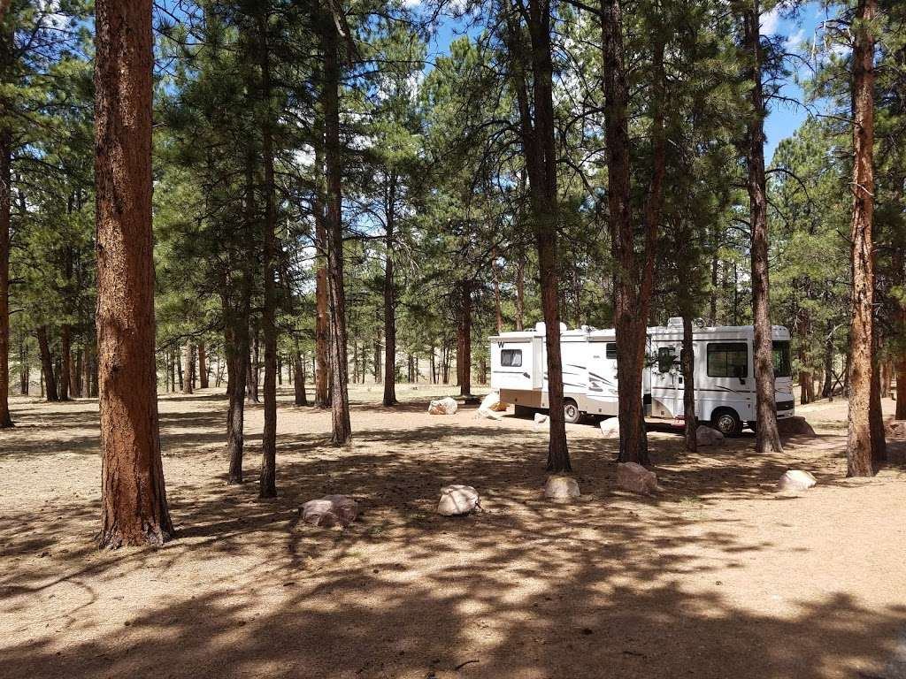 South Meadows Campground - campground  | Photo 5 of 10 | Address: Woodland Park, CO 80863, USA | Phone: (719) 636-1602