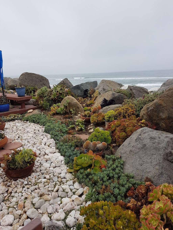 Home - Corky Art - art gallery  | Photo 8 of 10 | Address: 1460 Seacoast Dr, Imperial Beach, CA 91932, USA | Phone: 0171 7421487