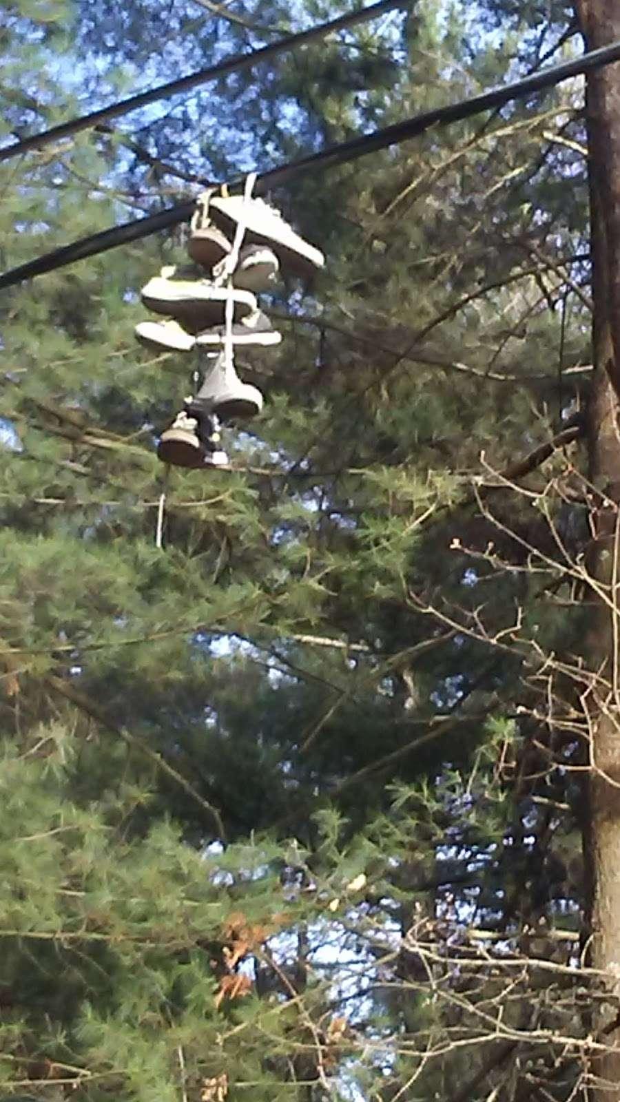 Wonderland Park - park  | Photo 7 of 10 | Address: Windham, NH 03087, USA
