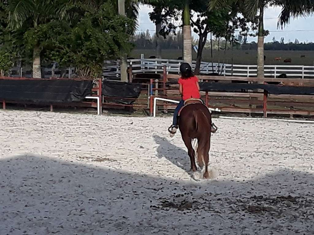 Club Rancho Gaspar - travel agency  | Photo 3 of 10 | Address: 16480 NW 117th Ave, Hialeah, FL 33018, USA | Phone: (305) 345-2782