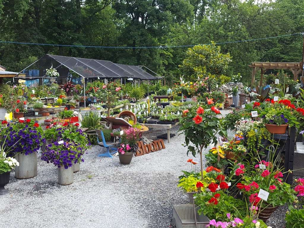 Hueters Greenhouse - store  | Photo 2 of 9 | Address: 3465 Deininger Rd, York, PA 17406, USA | Phone: (717) 755-5629