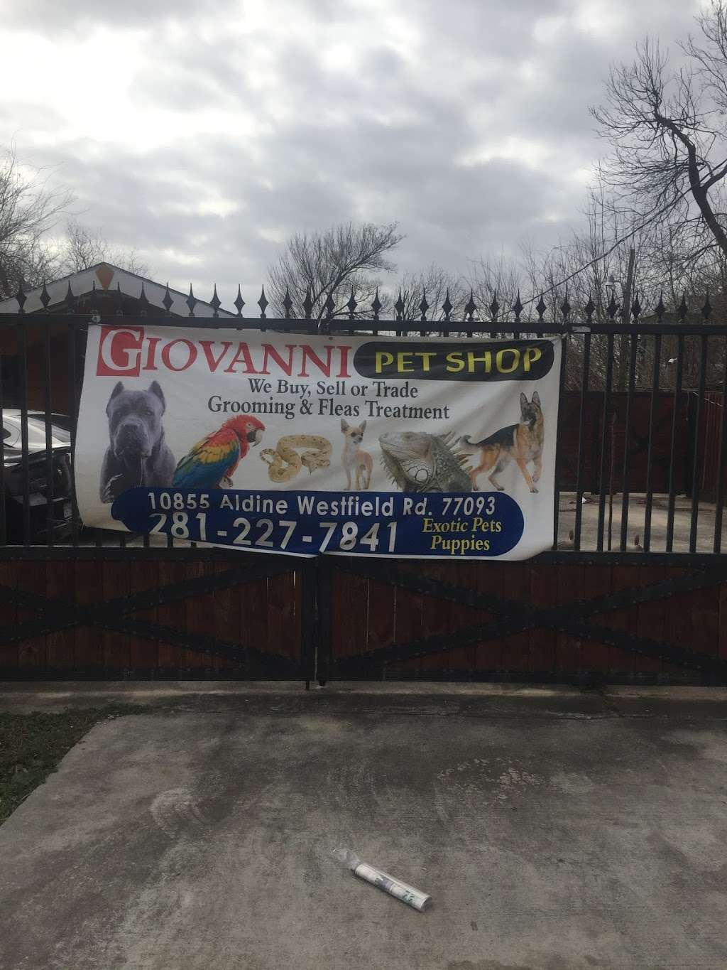 Geovannis Pet Shop - pet store  | Photo 4 of 6 | Address: 10855 Aldine Westfield Rd, Houston, TX 77093, USA | Phone: (281) 227-7841