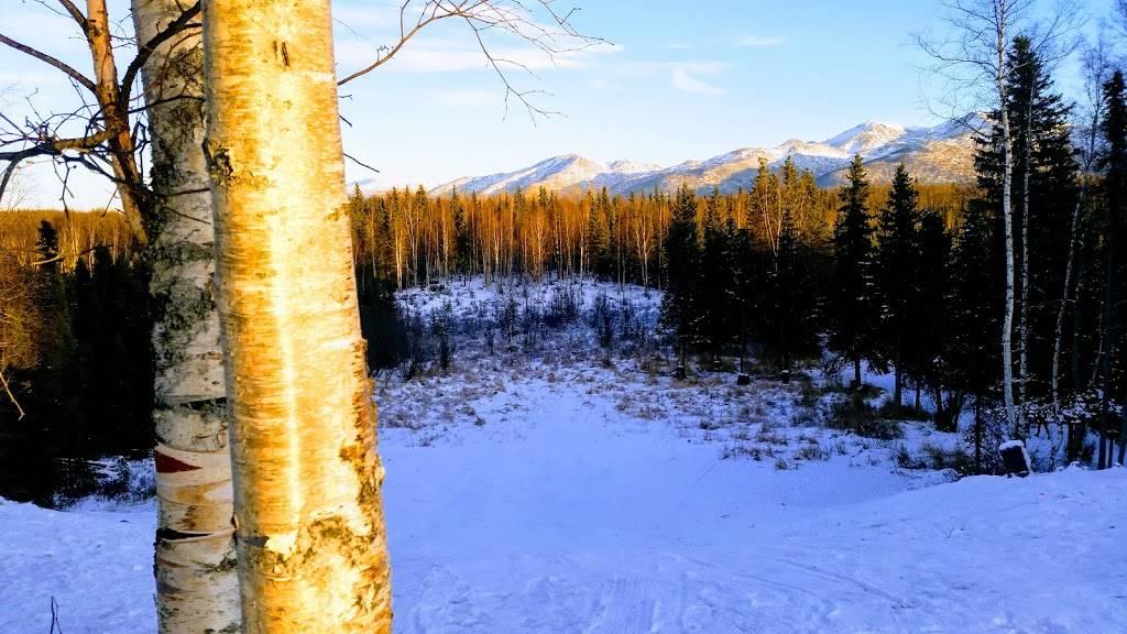 Far North Bicentennial Park - park  | Photo 7 of 10 | Address: 4970 Campbell Airstrip Rd, Anchorage, AK 99507, USA | Phone: (907) 343-4355