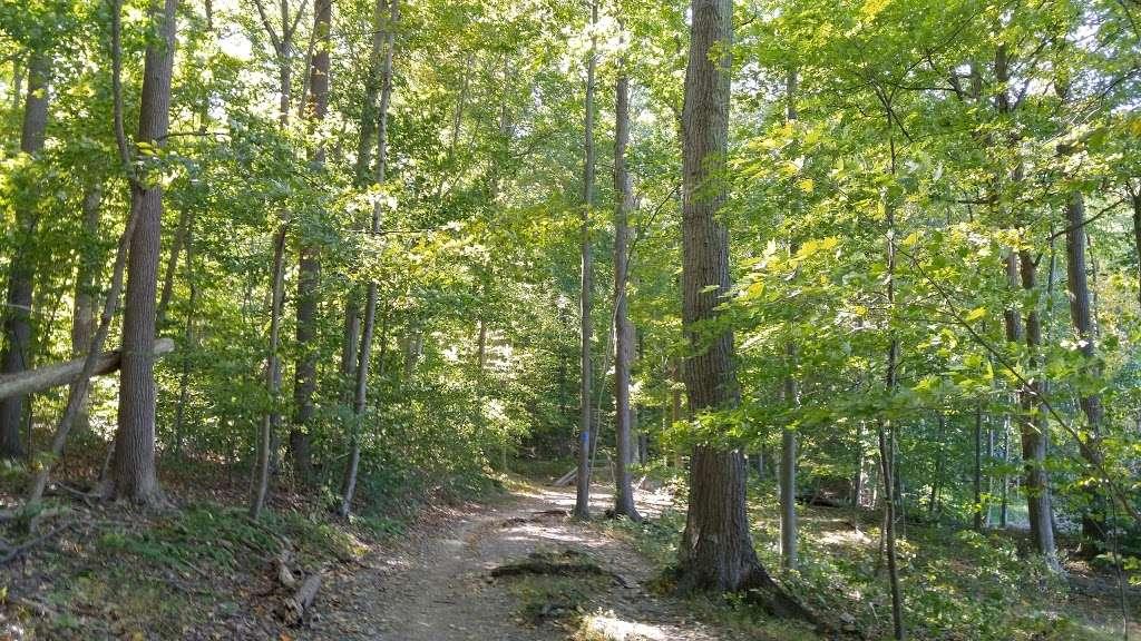 Green Lane Reservoir - park  | Photo 9 of 10 | Address: Pennsburg, PA 18073, USA