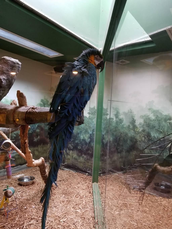 Kaleideum North - museum  | Photo 9 of 10 | Address: 400 W Hanes Mill Rd, Winston-Salem, NC 27105, USA | Phone: (336) 767-6730