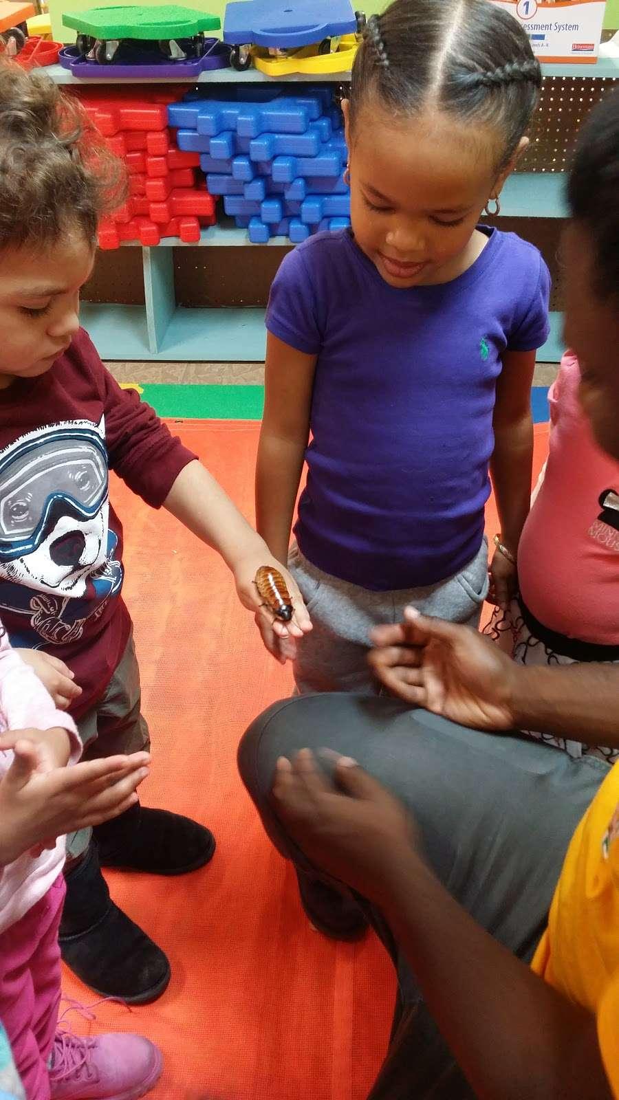 Playful Discoveries, CDC - school  | Photo 6 of 8 | Address: 1802 Matthews Ave, Bronx, NY 10462, USA | Phone: (718) 828-7529