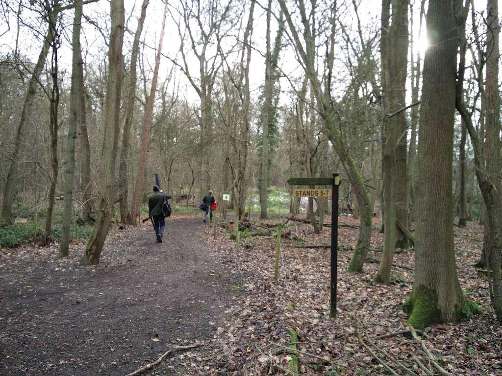Woodland Pursuits - school    Photo 2 of 10   Address: Ironsbottom, Sidlow, Reigate RH2 8QG, UK   Phone: 07770 473020
