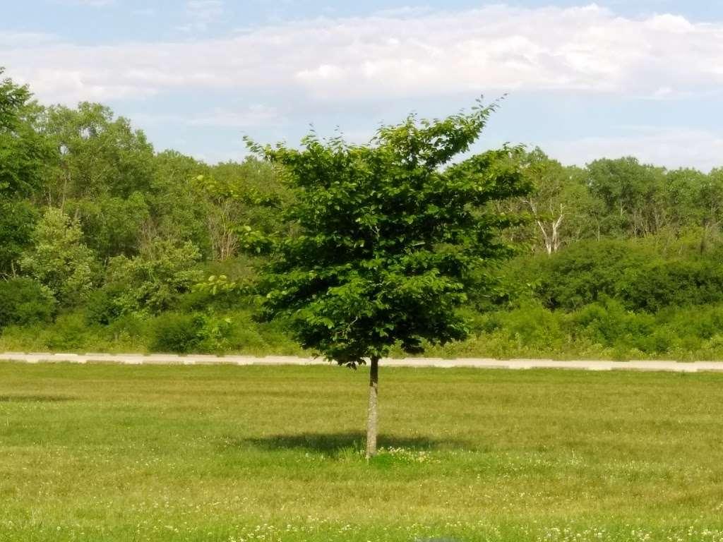 Midlothian Meadows - park  | Photo 1 of 10 | Address: W 155th St, Midlothian, IL 60445, USA | Phone: (708) 447-0090