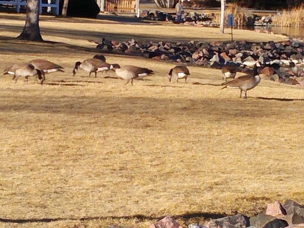 Hunters Glen Lake Park - park    Photo 5 of 10   Address: Thornton, CO 80241, USA   Phone: (303) 255-7830