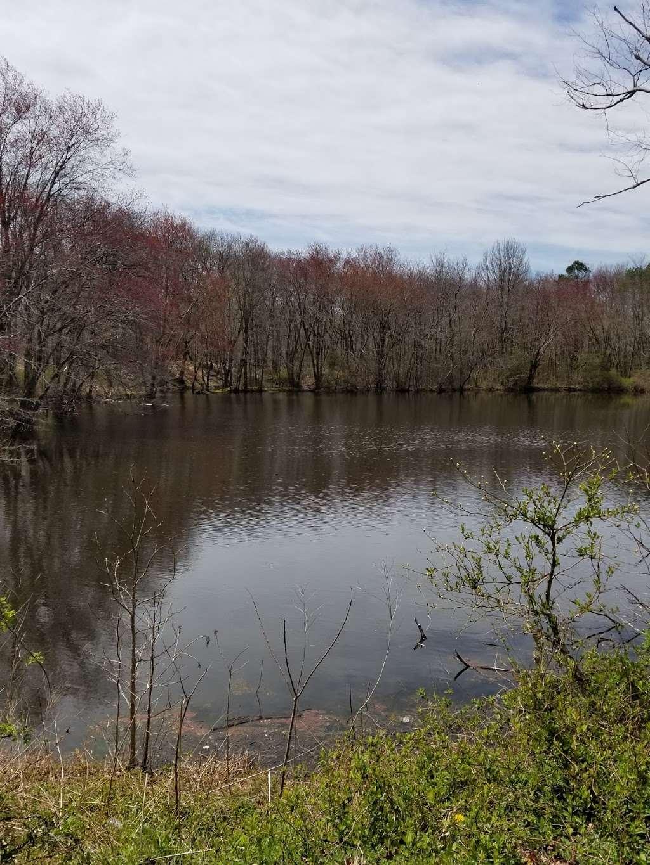 Liberty Park II - park  | Photo 10 of 10 | Address: 1400 W Park Ave, Tinton Falls, NJ 07712, USA | Phone: (732) 542-3400